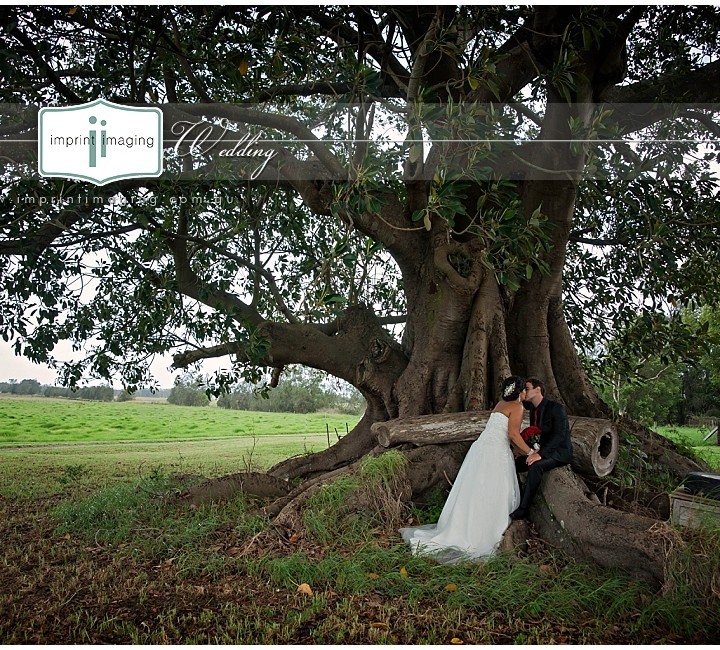 Imprint Imaging Wedding ~ Bree & Blake